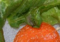 Haveselskabet i aktion mod dræbersneglene