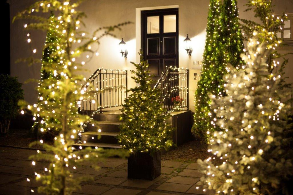 Vejlensiske haver bugner af julelys: Undgå at blive ruineret af julebelysningen