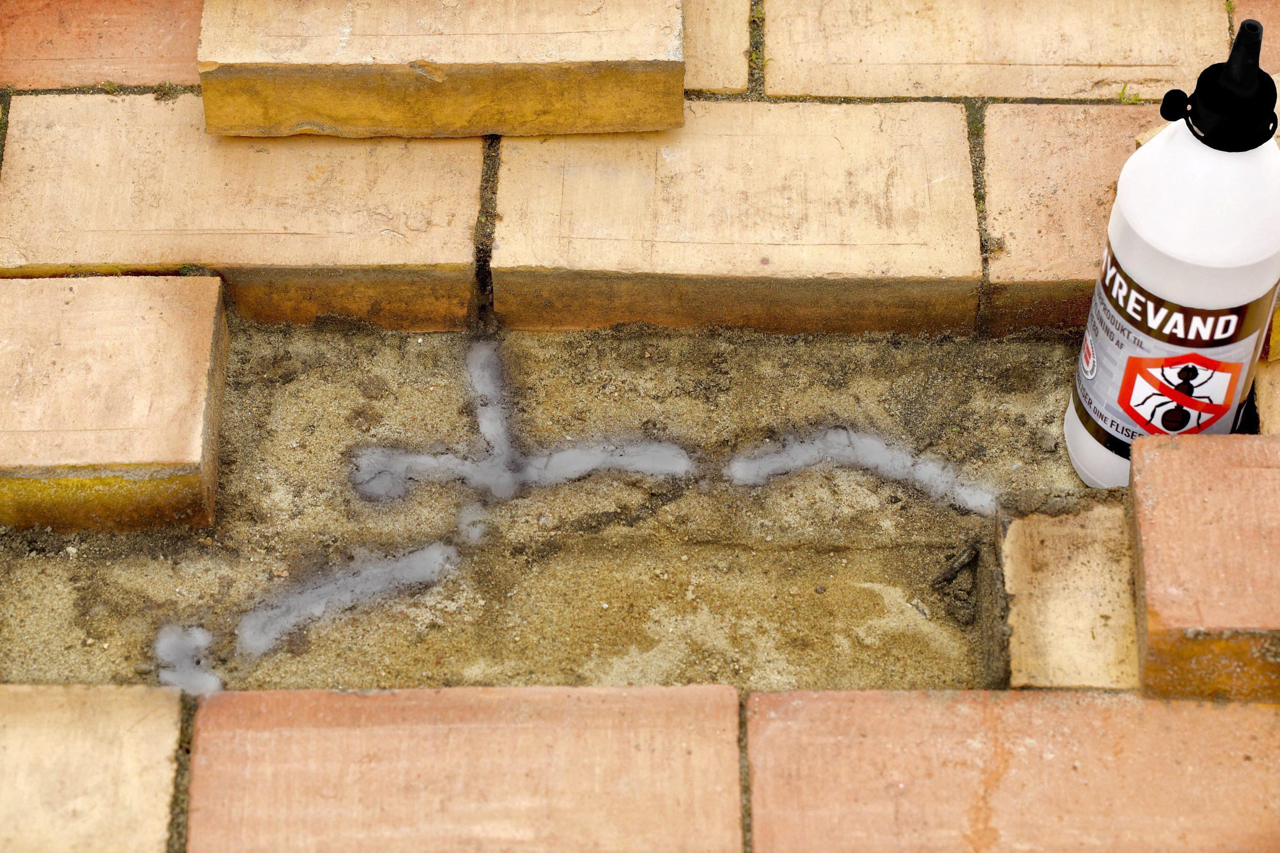 Stop myrerne med flydende jord