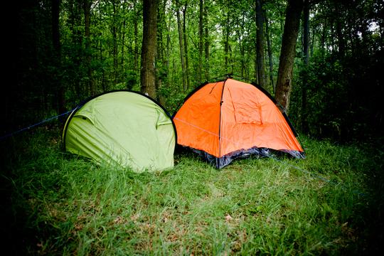 Flere skove med fri teltning forbedrer mulighederne for friluftsliv