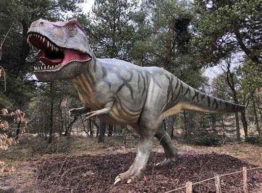 Event: Dinosaurernes verden // Sov på savannen // Gratis bustur